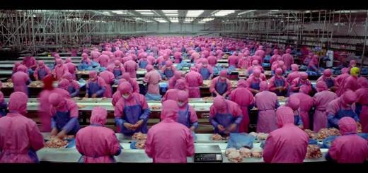 A forma assustadora como é produzida aquilo que comemos.