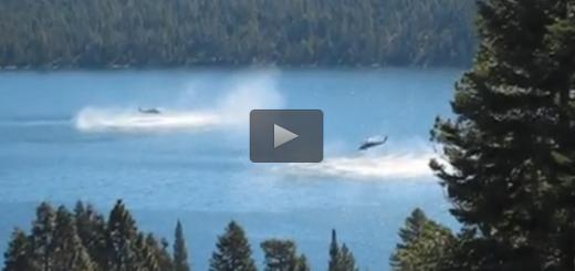 Carregado para Helicóptero da marinha cai no lago