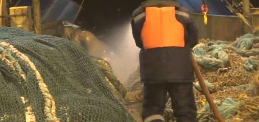 Pescadores apanham algo inesperado