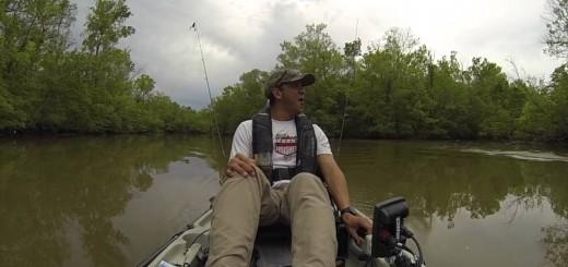 Pescador apanha um susto de morte