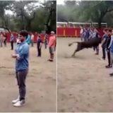 Os touros só atacam se forem atacados